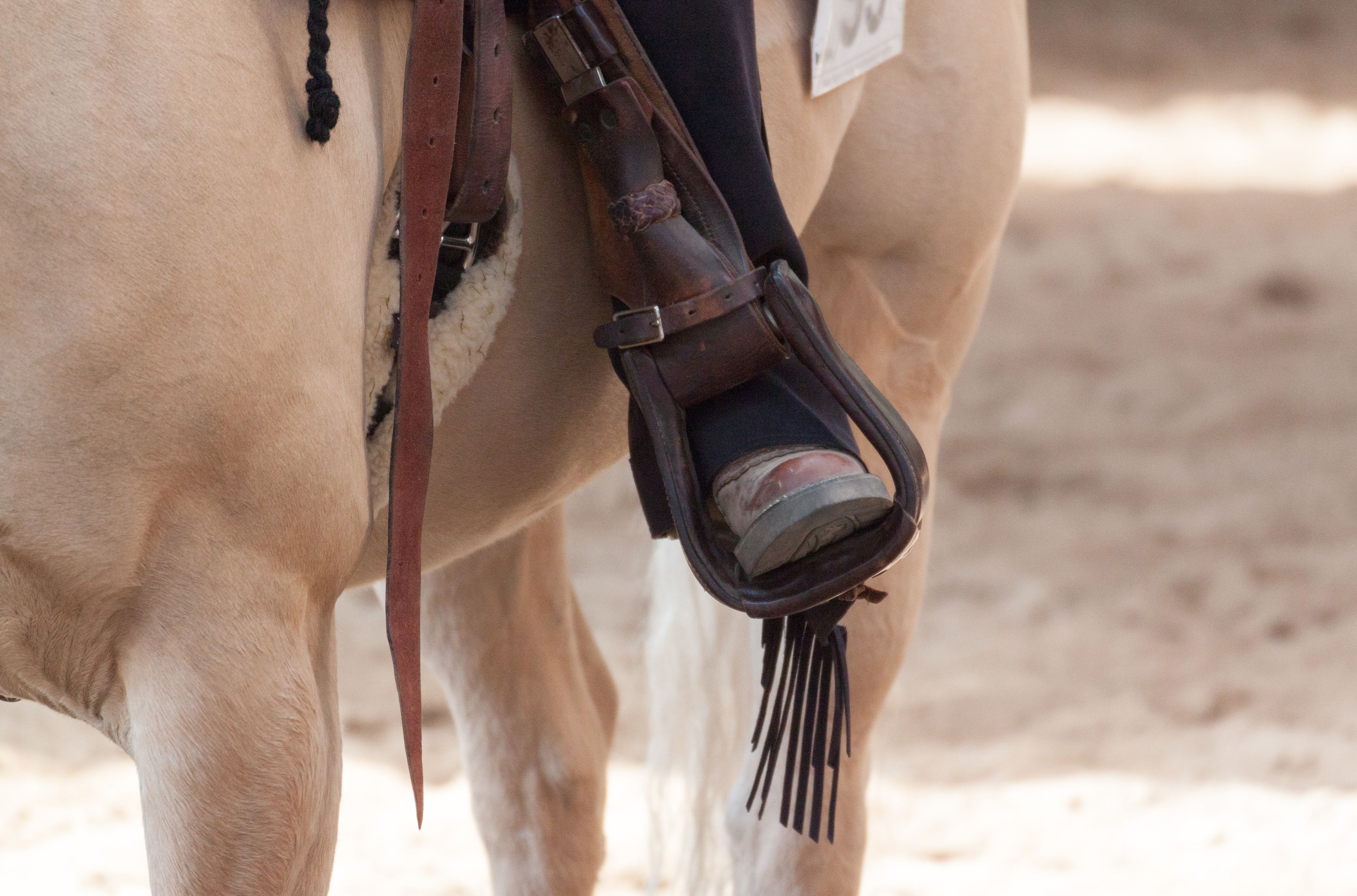 Low Section of Person Riding Horse