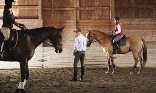 How to Control a Strong Horse That Pulls